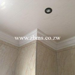 Ceilings & Partitions