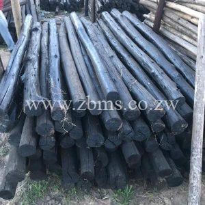 125mm - 150mm by 1.5m 1.2m 1.8m 2.1m 2.4m 2.7m 3m 4m 5m 6m treated poles for sale harare zimbabwe